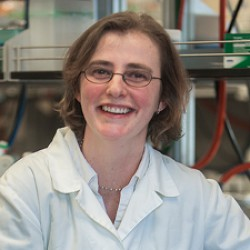 Biologist targets dormant bacteria