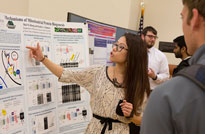 Binghamton Research Days 2015