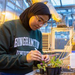 Fulbright scholar's studies focus on evolution